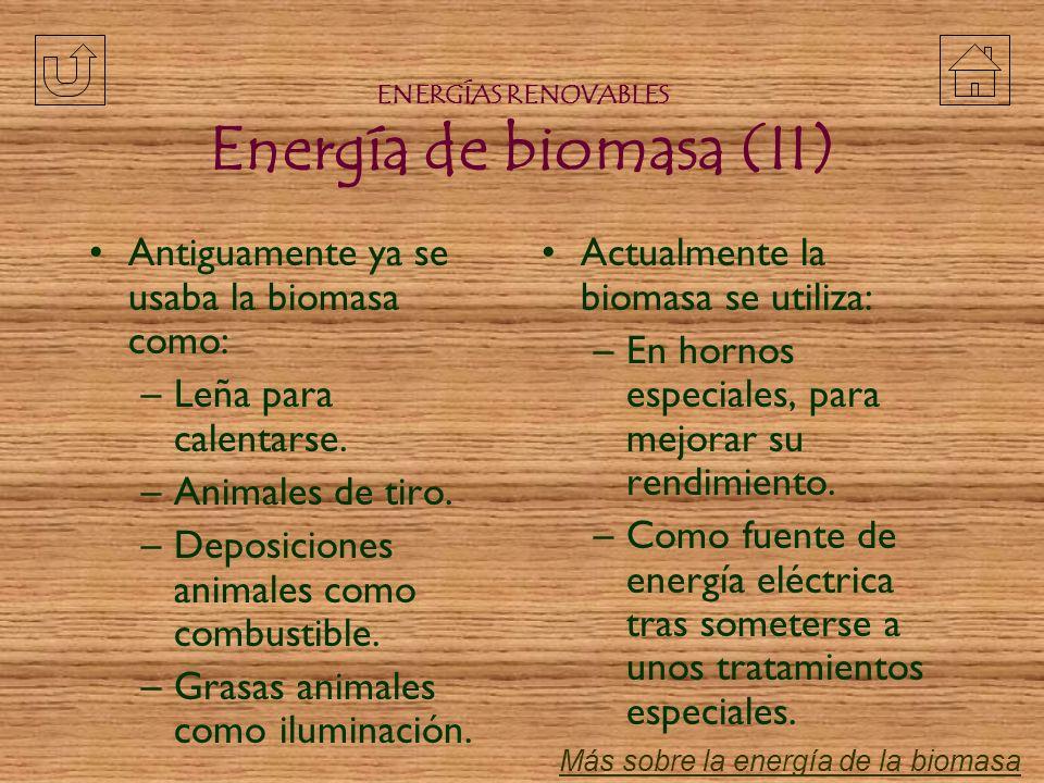 La biomasa es la cantidad de materia contenida en los seres vivos o en sus restos orgánicos. La materia y la energía química que contienen van pasando