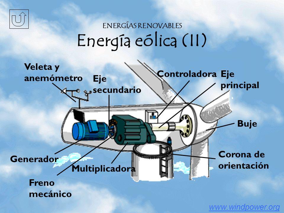 Buje Multiplicadora Eje principal Eje secundario Freno mecánico Veleta y anemómetro Controladora Corona de orientación Generador www.windpower.org ENERGÍAS RENOVABLES Energía eólica (II)