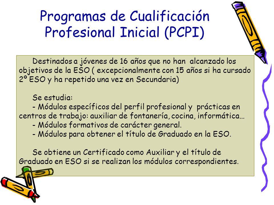 Programas de Cualificación Profesional Inicial (PCPI) Destinados a jóvenes de 16 años que no han alcanzado los objetivos de la ESO ( excepcionalmente