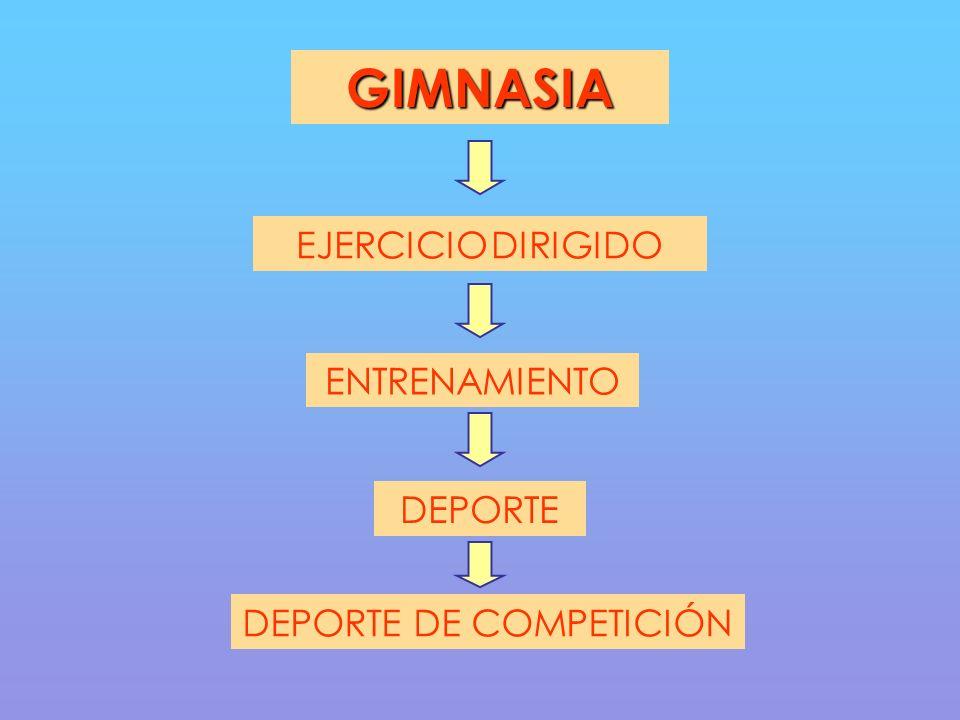 GIMNASIA EJERCICIO DIRIGIDO DEPORTE DEPORTE DE COMPETICIÓN ENTRENAMIENTO
