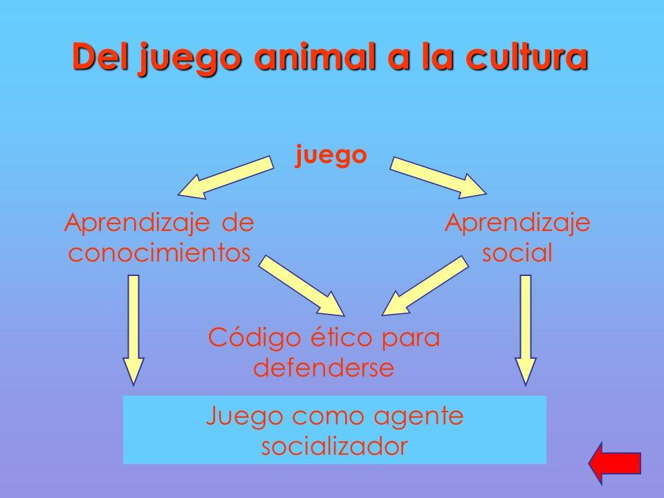 Del juego animal a la cultura juego Aprendizaje de conocimientos Aprendizaje social Código ético para defenderse Juego como agente socializador