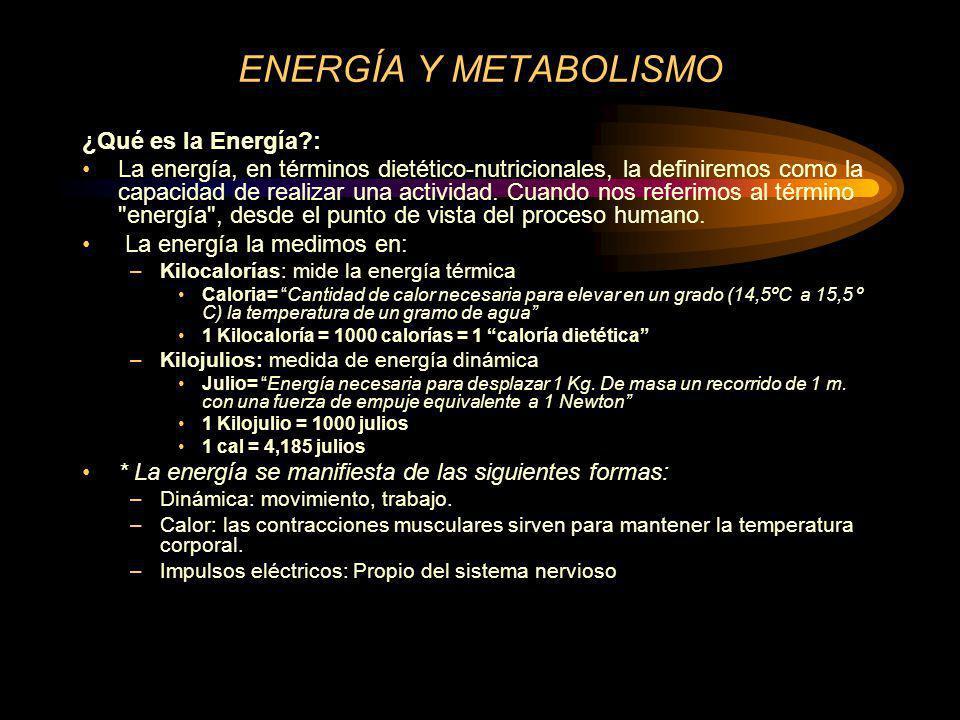 Valor energético y calórico de los alimentos Rendimiento energético de los alimentos: –Hidratos de carbono.........................4,1.................4 Kcal/g –Grasas...........................9,45...............9 –Proteínas.......................5,65...............4 –Alcohol (Etanol).............7,1.................7