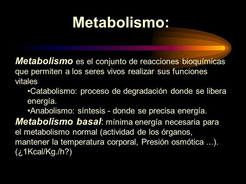 LOS MINERALES Son elementos inorgánicos incluidos en la dieta que son esenciales para los procesos vitales Funciones: –Construcción de tejidos corporales –Forman parte de algunas enzimas (metaloenzimas) que regulan el metabolismo –Se encuentran en forma de iones o electrolitos con carga eléctrica –No proporcionan energía