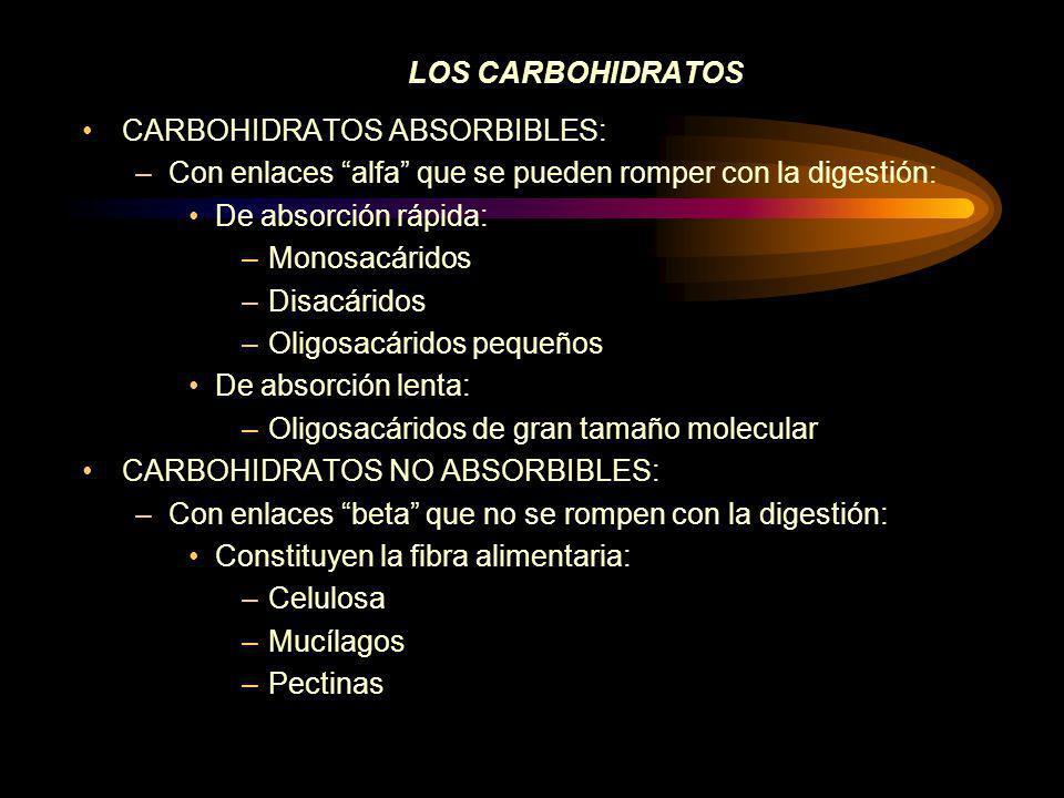 ÍNDICE GLUCÉMICO Y CARGA GLUCÉMICA EL ÍNDICE GLUCÉMICO: Capacidad de liberación de glucosa: –IG alto aumento rápido de la glucemia y descenso rápido –IG bajo aumento lento pero mantenido Tipo de carbohidrato Actividad de las amilasas digestivas Rapidez en el vaciado gástrico y tránsito intestinal Alimentos acompañantes Tipo de cocción Presencia de fibra CARGA GLUCÉMICA: Hace relación al porcentaje de carbohidratos de un alimento = (IG /100) x gramos de carbohidratos de un alimento (en 100 grs.)