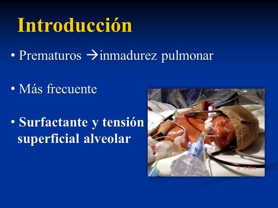 Introducción Prematuros inmadurez pulmonar Más frecuente Más frecuente Surfactante y tensión Surfactante y tensión superficial alveolar superficial al