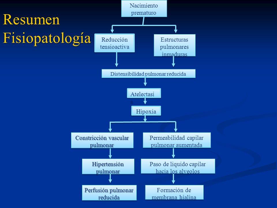 Nacimiento prematuro Reducción tensioactiva Estructuras pulmonares inmaduras Distensibilidad pulmonar reducida Atelectasi a Hipoxia Permeabilidad capi
