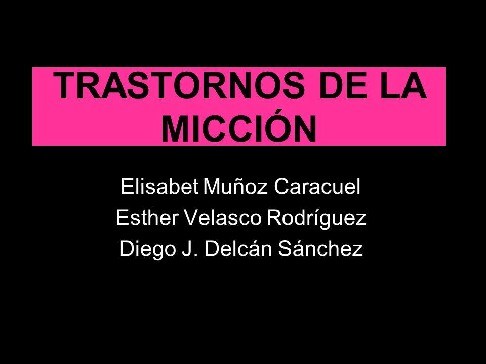 TRASTORNOS DE LA MICCIÓN Elisabet Muñoz Caracuel Esther Velasco Rodríguez Diego J. Delcán Sánchez