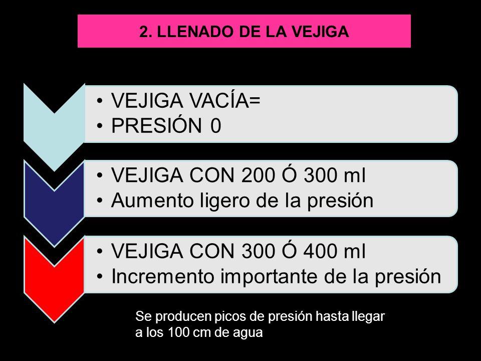 2. LLENADO DE LA VEJIGA VEJIGA VACÍA= PRESIÓN 0 VEJIGA CON 200 Ó 300 ml Aumento ligero de la presión VEJIGA CON 300 Ó 400 ml Incremento importante de