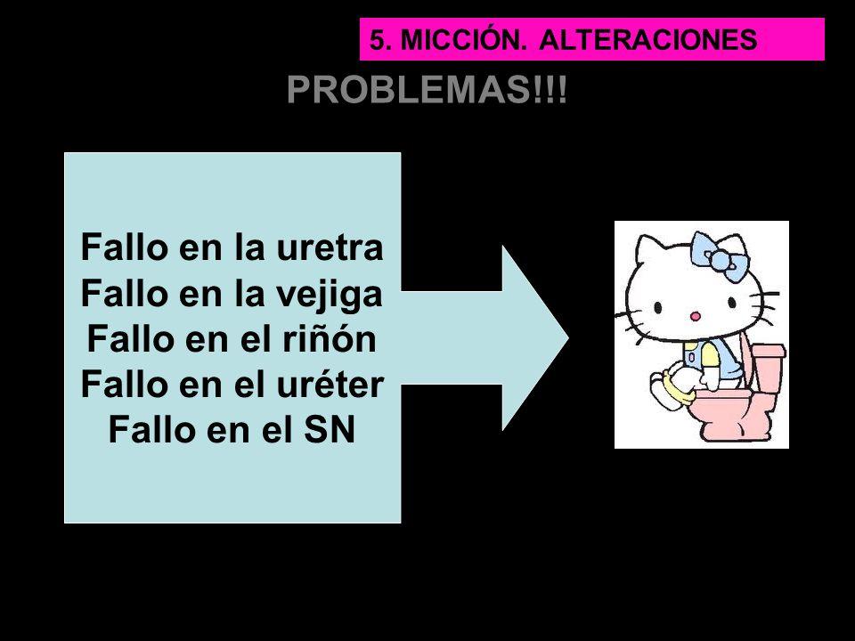 PROBLEMAS!!! Fallo en la uretra Fallo en la vejiga Fallo en el riñón Fallo en el uréter Fallo en el SN 5. MICCIÓN. ALTERACIONES