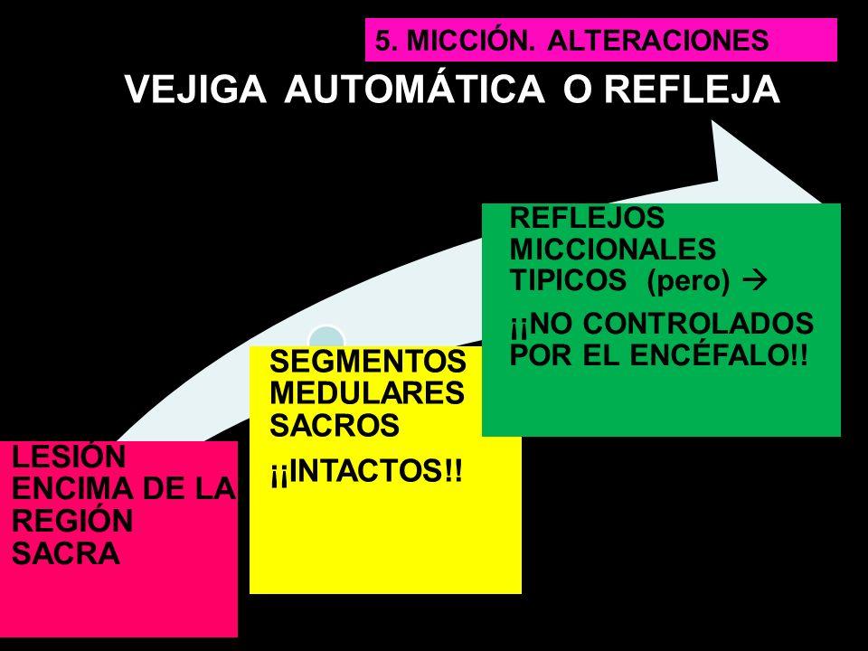 VEJIGA AUTOMÁTICA O REFLEJA LESIÓN ENCIMA DE LA REGIÓN SACRA SEGMENTOS MEDULARES SACROS ¡¡INTACTOS!! REFLEJOS MICCIONALES TIPICOS (pero) ¡¡NO CONTROLA