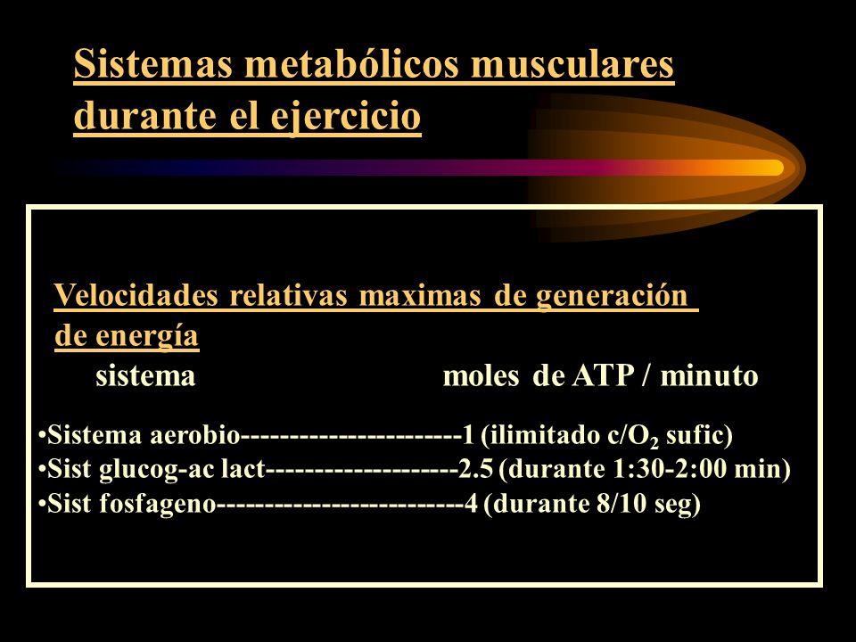 Sistemas metabólicos musculares durante el ejercicio Resistencias relativas de los diferentes sistemas Sistema aerobio = alta resistencia (maraton, natacion, etc) Sistema glucogeno-ac lactico = resistencia intermedia (carrera de 800 mts, futbol, tenis, etc).