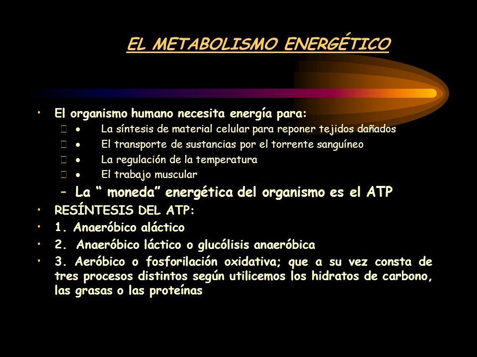 La estructura del ATP se basa en enlace de una molécula de ADENOSINA y tres de fosfato, unidos por unos enlaces con gran cantidad de energía.