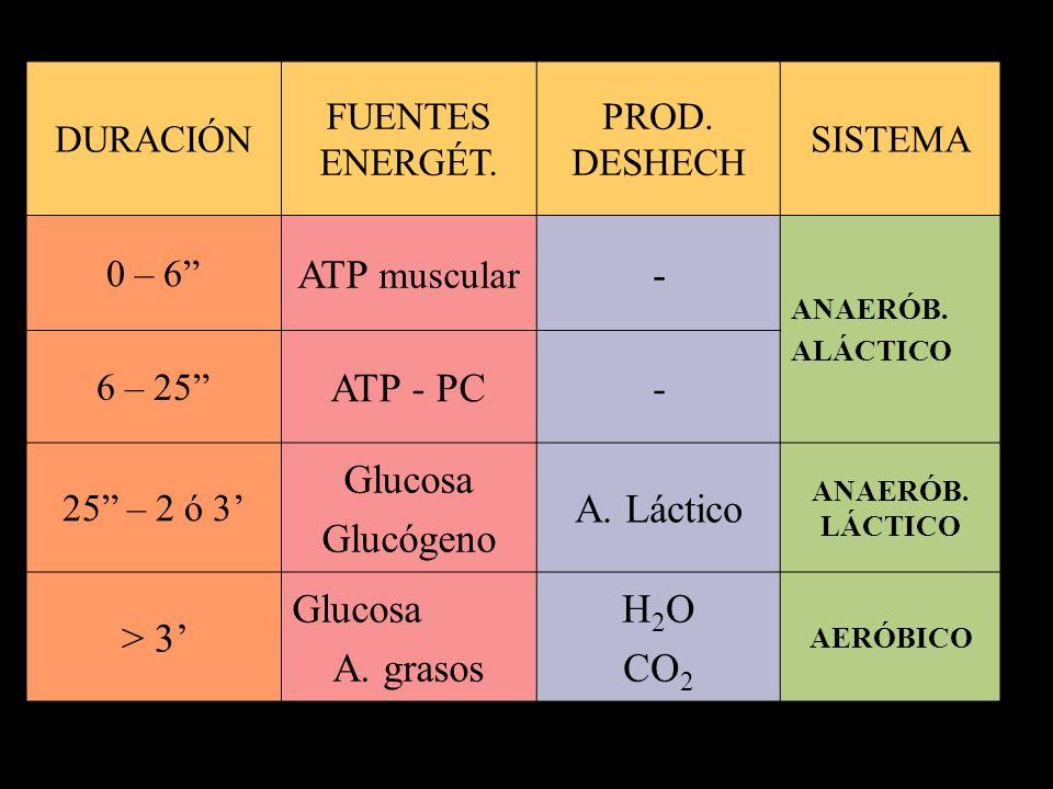 Sistemas metabólicos musculares durante el ejercicio 1)SISTEMA DEL FOSFÁGENO: * Utilización del ATP libre y la FOSFOCREATINA * Produce 8 –10 seg de actividad máxima.