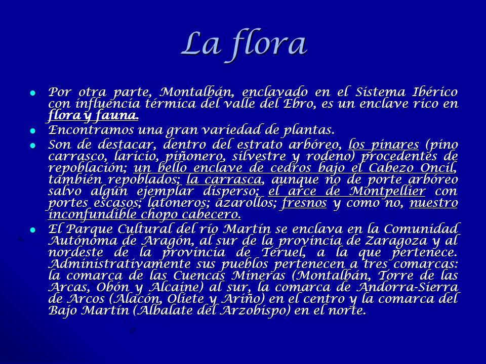 La flora Por otra parte, Montalbán, enclavado en el Sistema Ibérico con influencia térmica del valle del Ebro, es un enclave rico en flora y fauna. Po