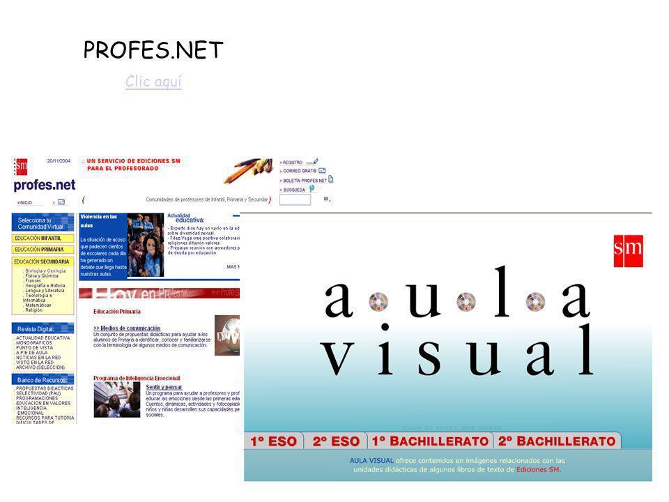 Indexnet Santillana