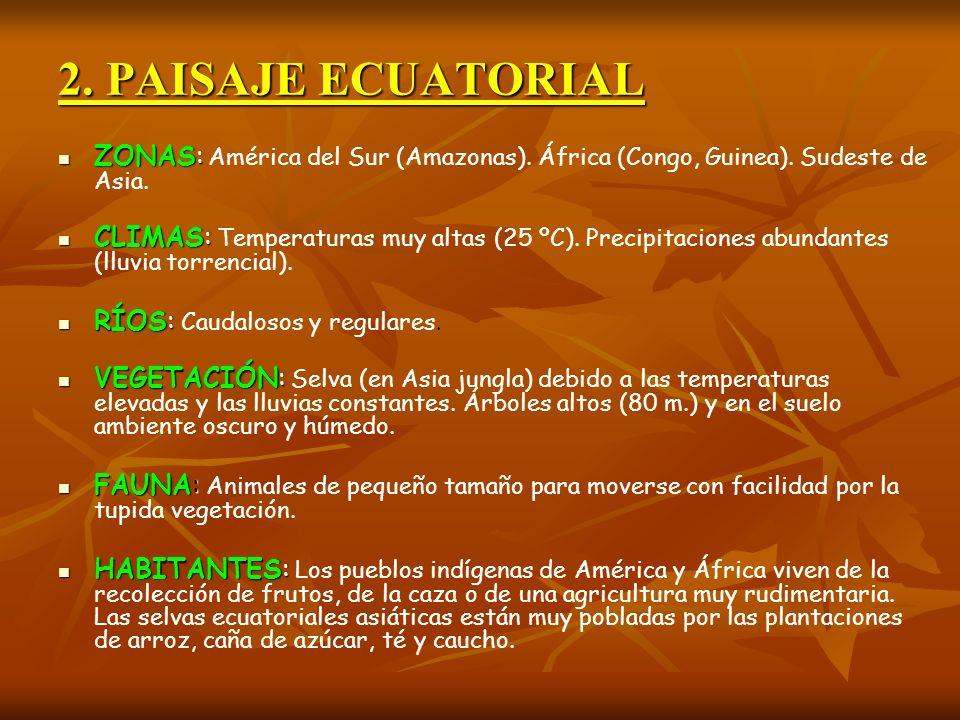 2. PAISAJE ECUATORIAL ZONAS: ZONAS: América del Sur (Amazonas). África (Congo, Guinea). Sudeste de Asia. CLIMAS: CLIMAS: Temperaturas muy altas (25 ºC