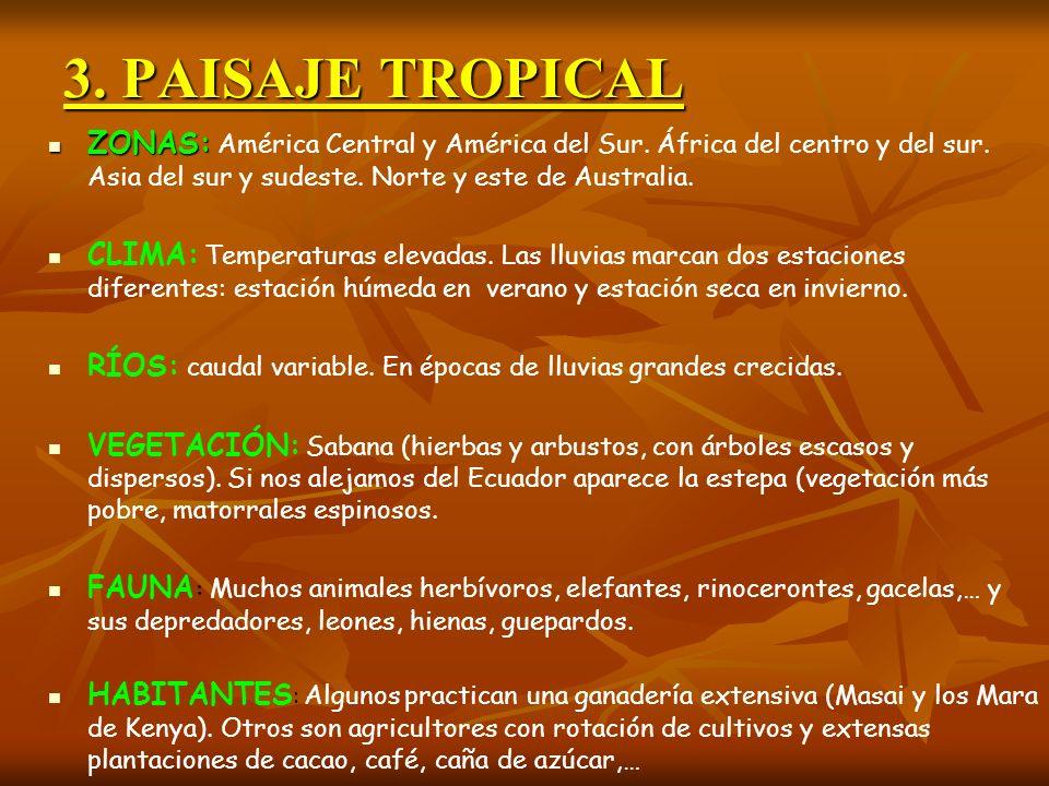 3. PAISAJE TROPICAL ZONAS: ZONAS: América Central y América del Sur. África del centro y del sur. Asia del sur y sudeste. Norte y este de Australia. C