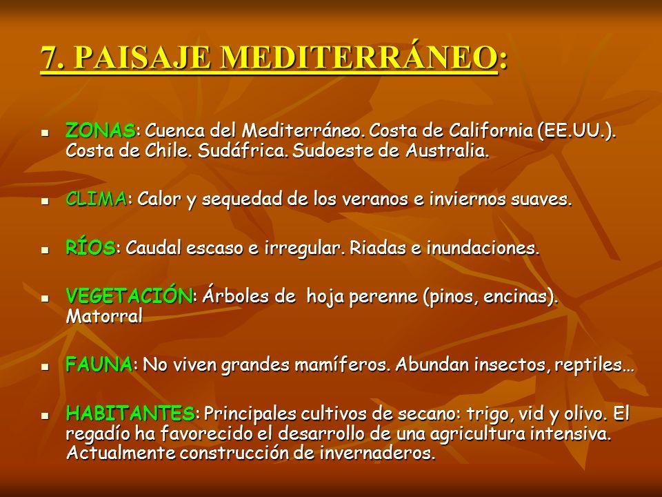 7. PAISAJE MEDITERRÁNEO: ZONAS: Cuenca del Mediterráneo. Costa de California (EE.UU.). Costa de Chile. Sudáfrica. Sudoeste de Australia. ZONAS: Cuenca