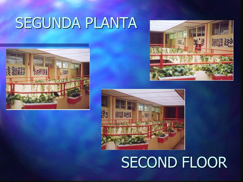 SEGUNDA PLANTA SECOND FLOOR