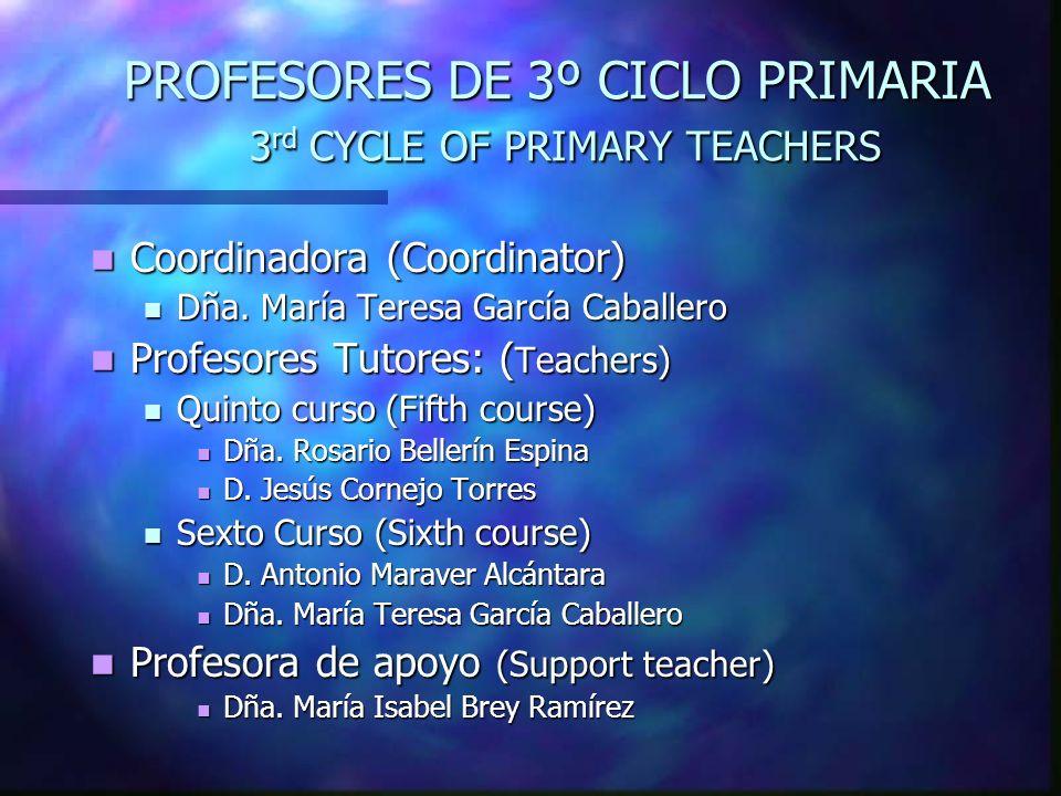 PROFESORES DE 3º CICLO PRIMARIA 3 rd CYCLE OF PRIMARY TEACHERS Coordinadora (Coordinator) Coordinadora (Coordinator) Dña. María Teresa García Caballer