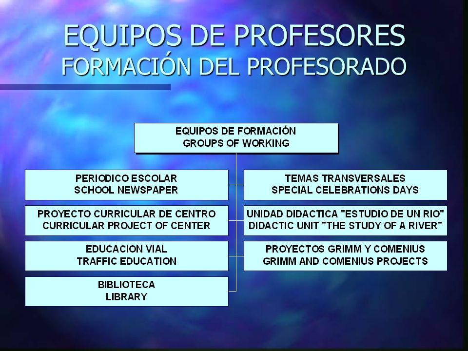 EQUIPOS DE PROFESORES FORMACIÓN DEL PROFESORADO