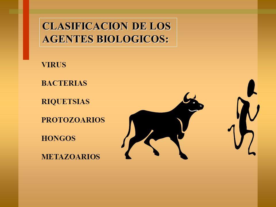 CLASIFICACION DE LOS AGENTES QUIMICOS: SOLIDOS LIQUIDOS GASES POLVOS HUMOS ROCIOS NEBLINAS VAPORES GASES