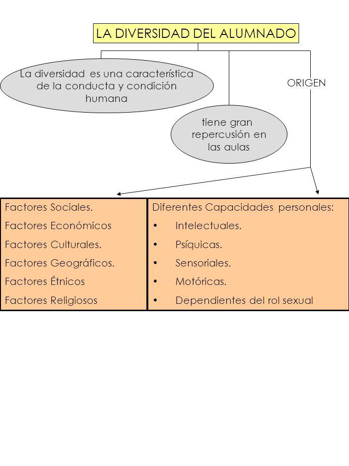 Factores Sociales. Factores Económicos Factores Culturales. Factores Geográficos. Factores Étnicos Factores Religiosos Diferentes Capacidades personal