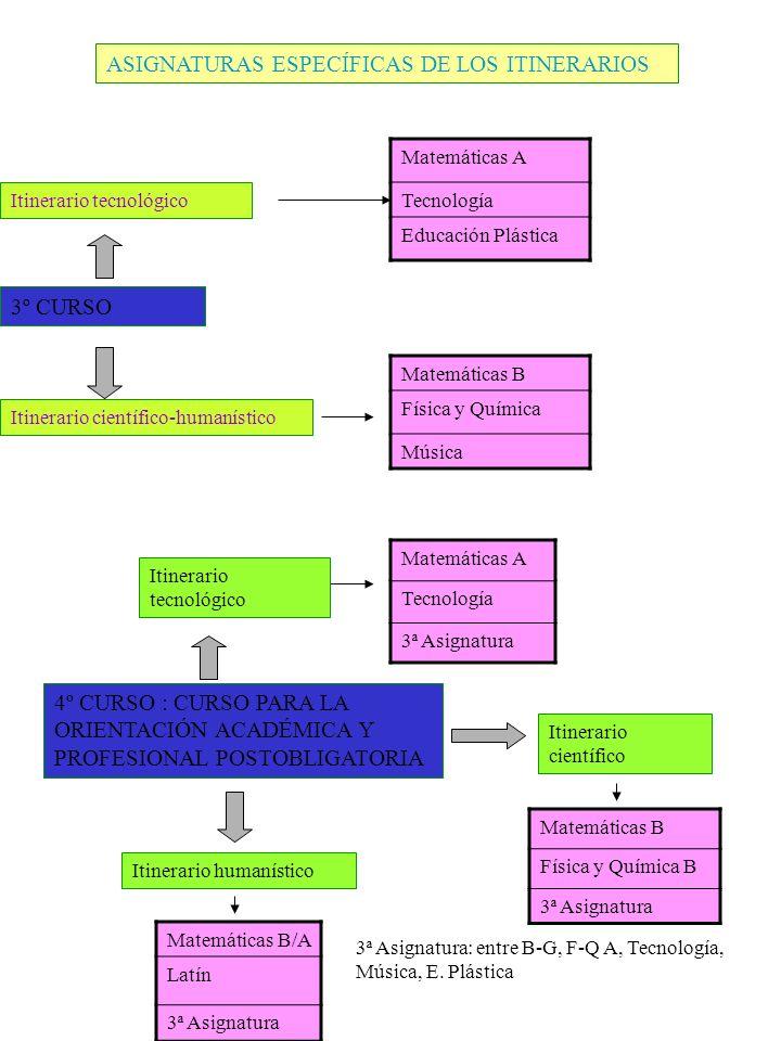 ASIGNATURAS ESPECÍFICAS DE LOS ITINERARIOS 3º CURSO Itinerario tecnológico Itinerario científico-humanístico Matemáticas A Tecnología Educación Plásti