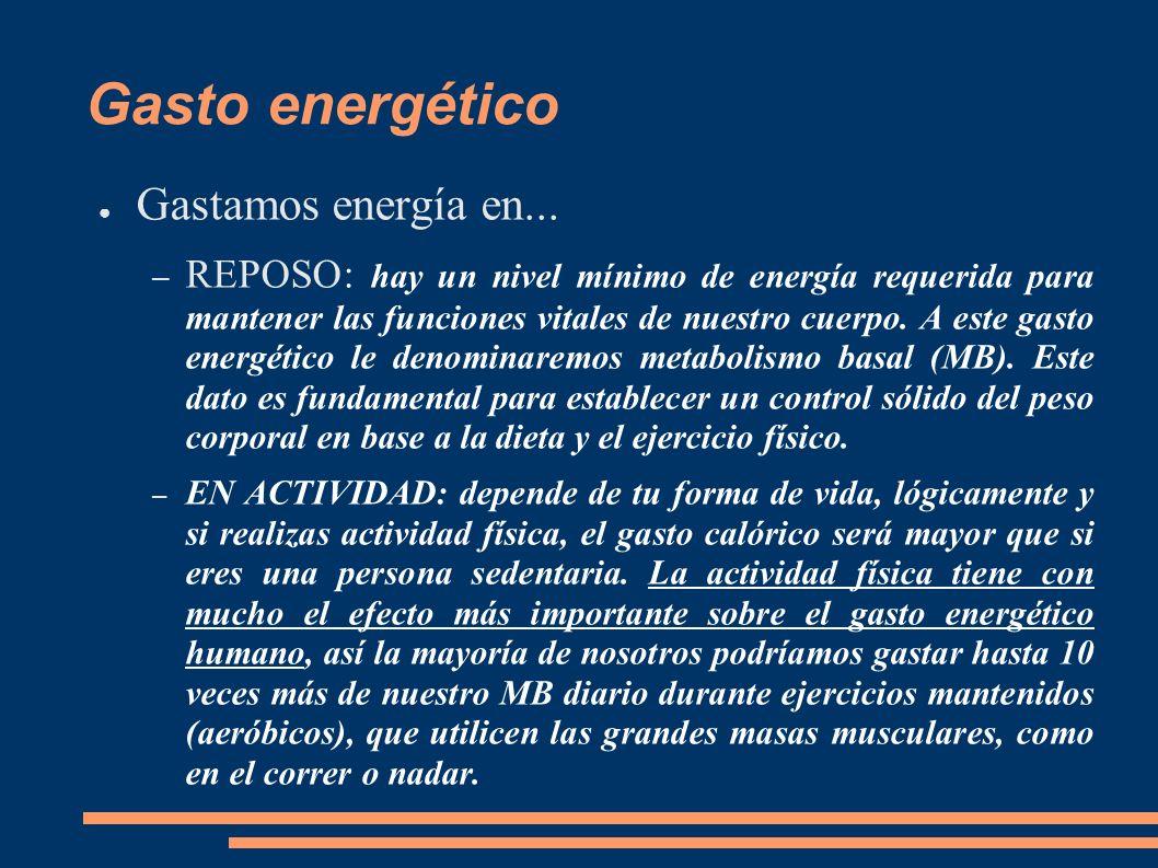 Gasto energético Gastamos energía en... – REPOSO: hay un nivel mínimo de energía requerida para mantener las funciones vitales de nuestro cuerpo. A es