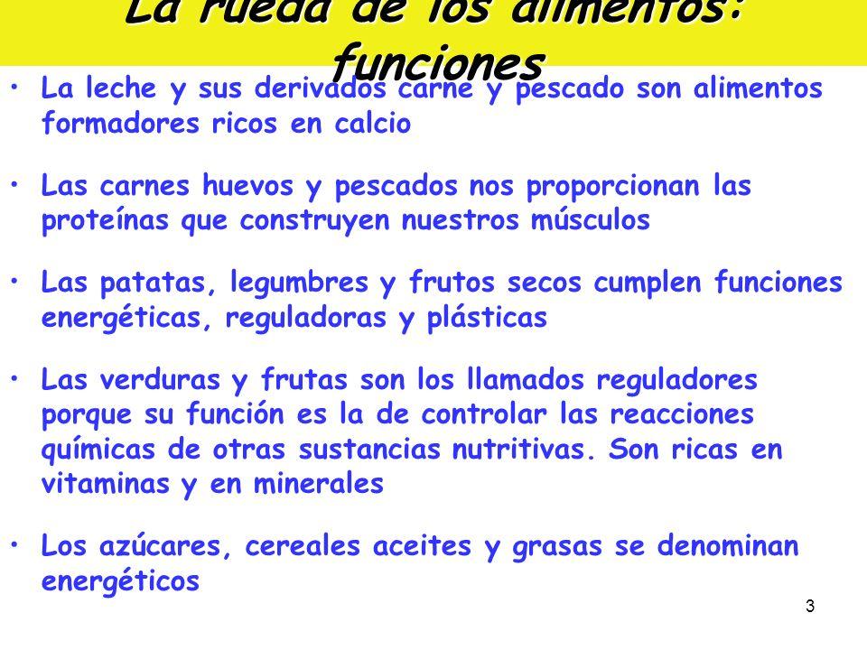 3 La rueda de los alimentos: funciones La leche y sus derivados carne y pescado son alimentos formadores ricos en calcio Las carnes huevos y pescados