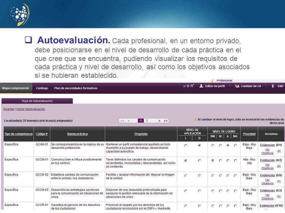 www.juntadeandalucia.es/agenciadecalidadsanitaria Autoevaluación. Cada profesional, en un entorno privado, debe posicionarse en el nivel de desarrollo