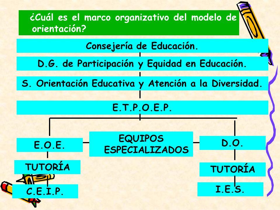 ¿Cuál es el marco organizativo del modelo de orientación? D.G. de Participación y Equidad en Educación. E.T.P.O.E.P. E.O.E. EQUIPOS ESPECIALIZADOS D.O