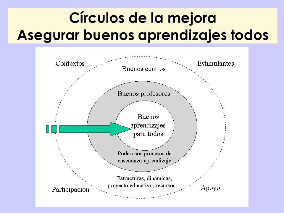 Círculos de la mejora Asegurar buenos aprendizajes todos