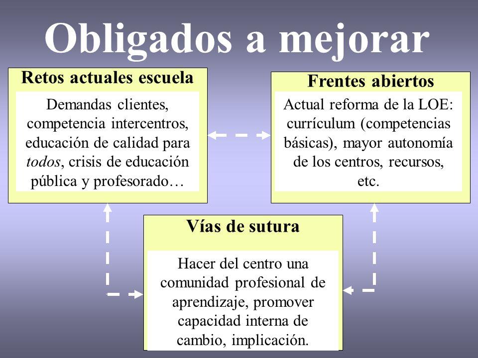 Obligados a mejorar Retos actuales escuela Frentes abiertos Vías de sutura Demandas clientes, competencia intercentros, educación de calidad para todo