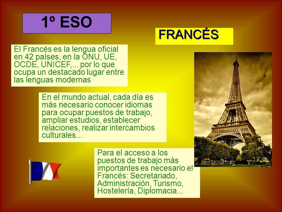FRANCÉS El Francés es la lengua oficial en 42 países, en la ONU, UE, OCDE, UNICEF,...