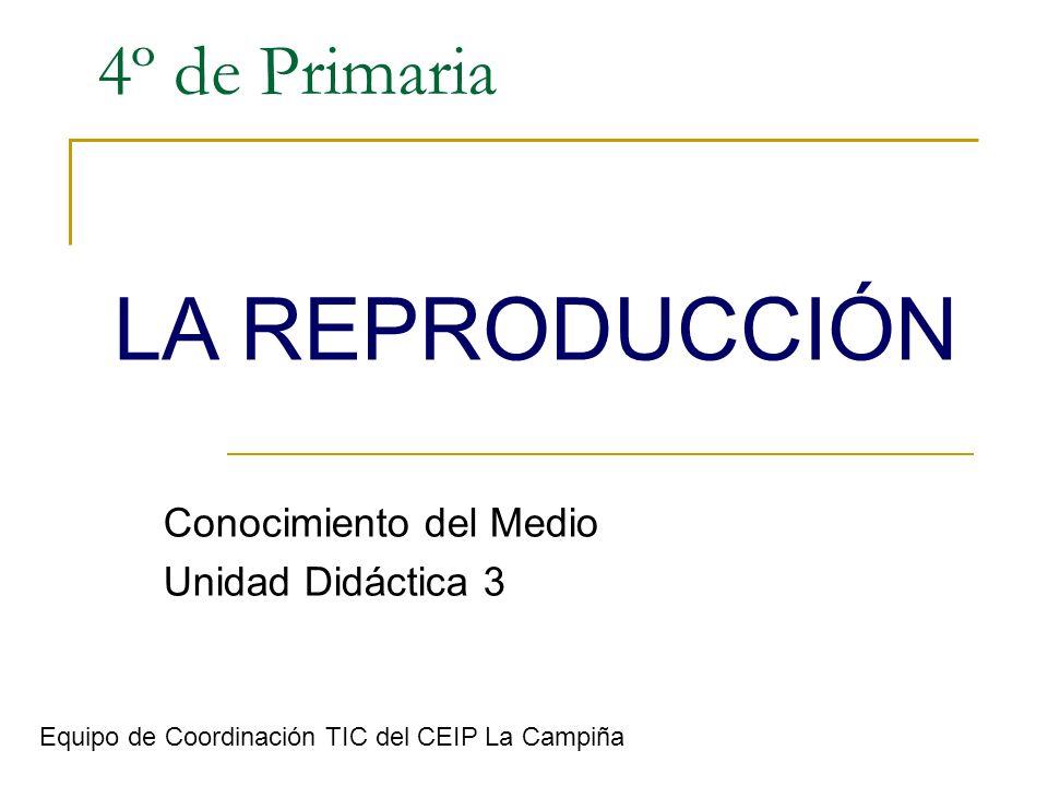 4º de Primaria Conocimiento del Medio Unidad Didáctica 3 LA REPRODUCCIÓN Equipo de Coordinación TIC del CEIP La Campiña