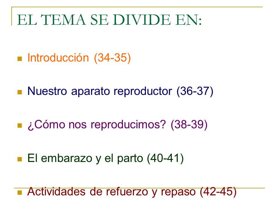 EL TEMA SE DIVIDE EN: Introducción (34-35) Nuestro aparato reproductor (36-37) ¿Cómo nos reproducimos? (38-39) El embarazo y el parto (40-41) Activida