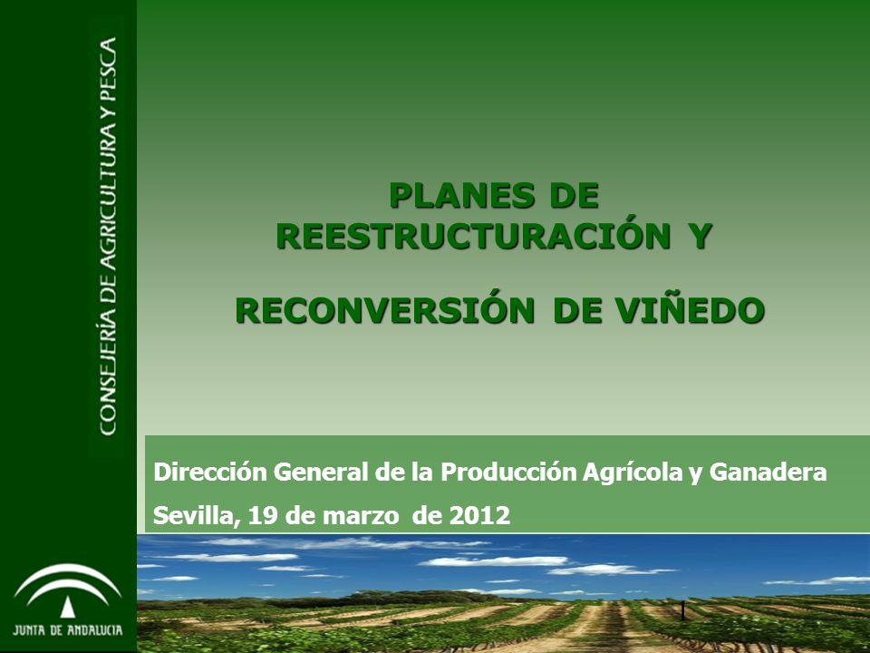 1 PLANES DE REESTRUCTURACIÓN Y RECONVERSIÓN DE VIÑEDO RECONVERSIÓN DE VIÑEDO Dirección General de la Producción Agrícola y Ganadera Sevilla, 19 de marzo de 2012