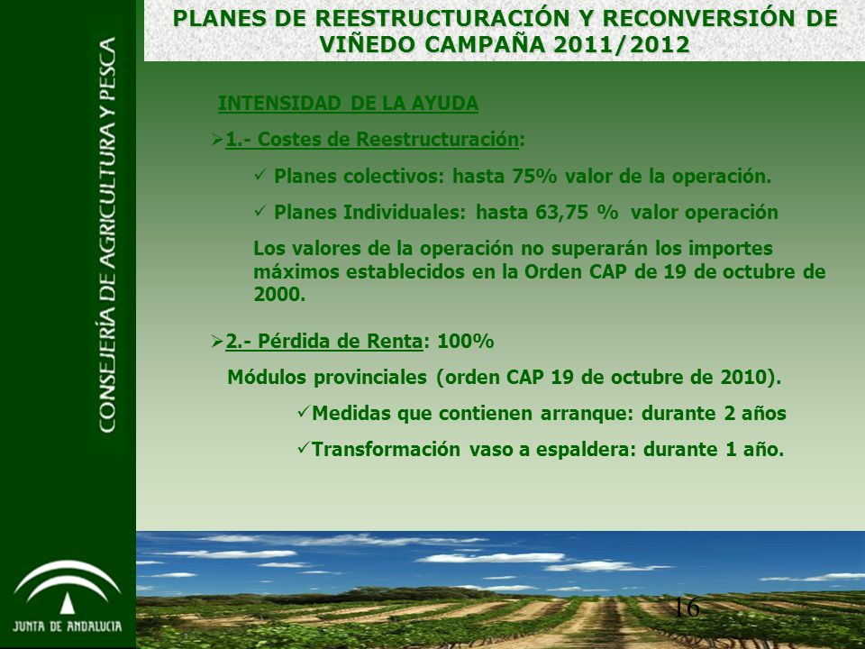 16 INTENSIDAD DE LA AYUDA 1.- Costes de Reestructuración: Planes colectivos: hasta 75% valor de la operación.