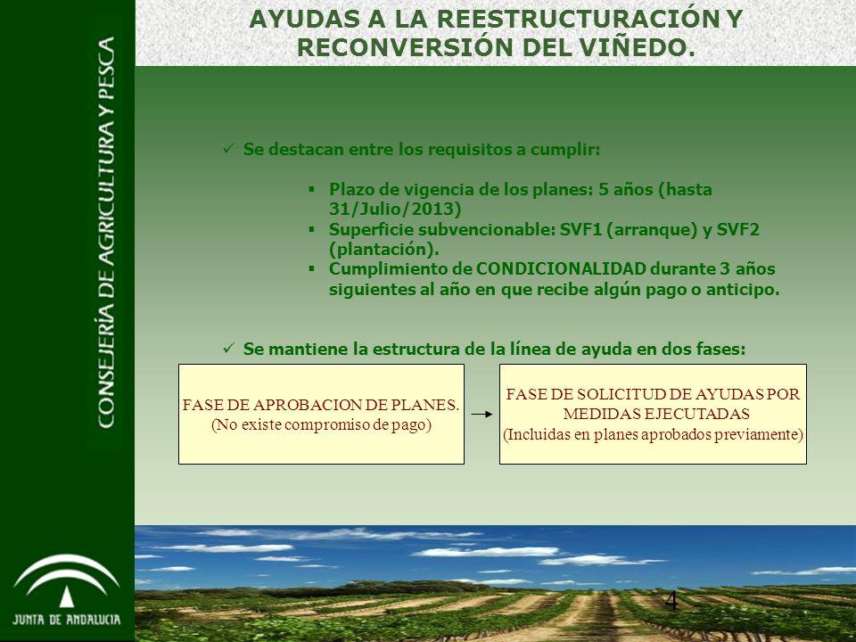4 AYUDAS A LA REESTRUCTURACIÓN Y RECONVERSIÓN DEL VIÑEDO.
