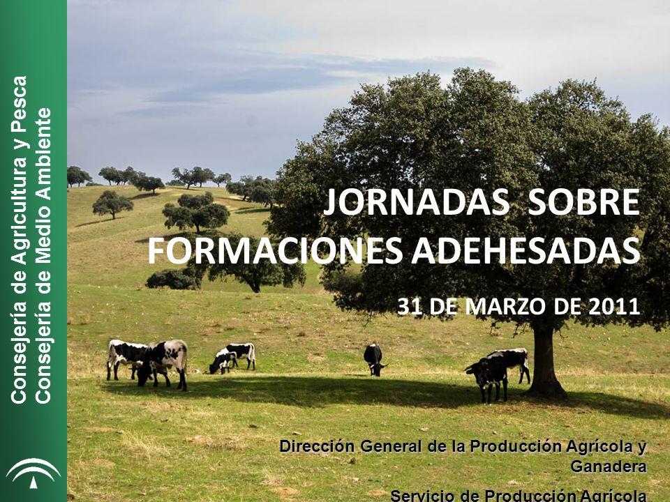 Consejería de Agricultura y Pesca Consejería de Medio Ambiente JORNADAS SOBRE FORMACIONES ADEHESADAS 31 DE MARZO DE 2011 Dirección General de la Producción Agrícola y Ganadera Servicio de Producción Agrícola