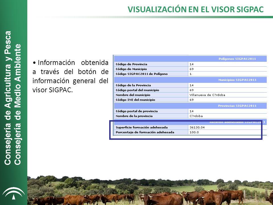 VISUALIZACIÓN EN EL VISOR SIGPAC Información obtenida a través del botón de información general del visor SIGPAC.
