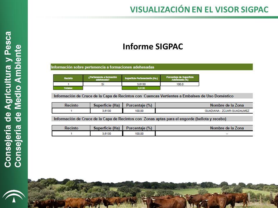 VISUALIZACIÓN EN EL VISOR SIGPAC Informe SIGPAC Consejería de Agricultura y Pesca Consejería de Medio Ambiente
