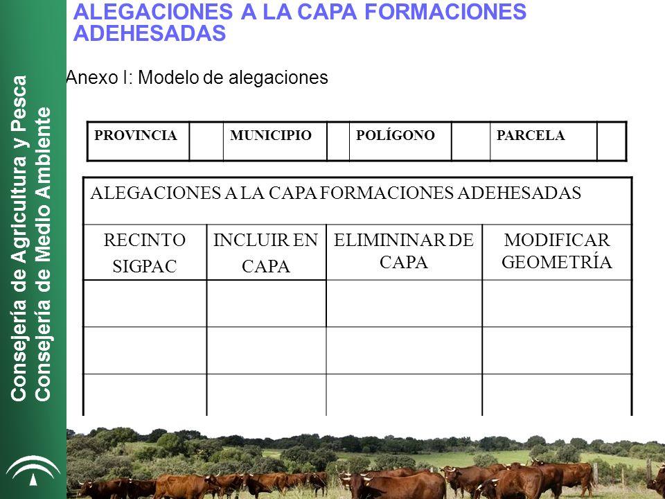 ALEGACIONES A LA CAPA FORMACIONES ADEHESADAS Anexo I: Modelo de alegaciones [1][1]Sistema de Explotación, Secano (S)/ Regadío (R).