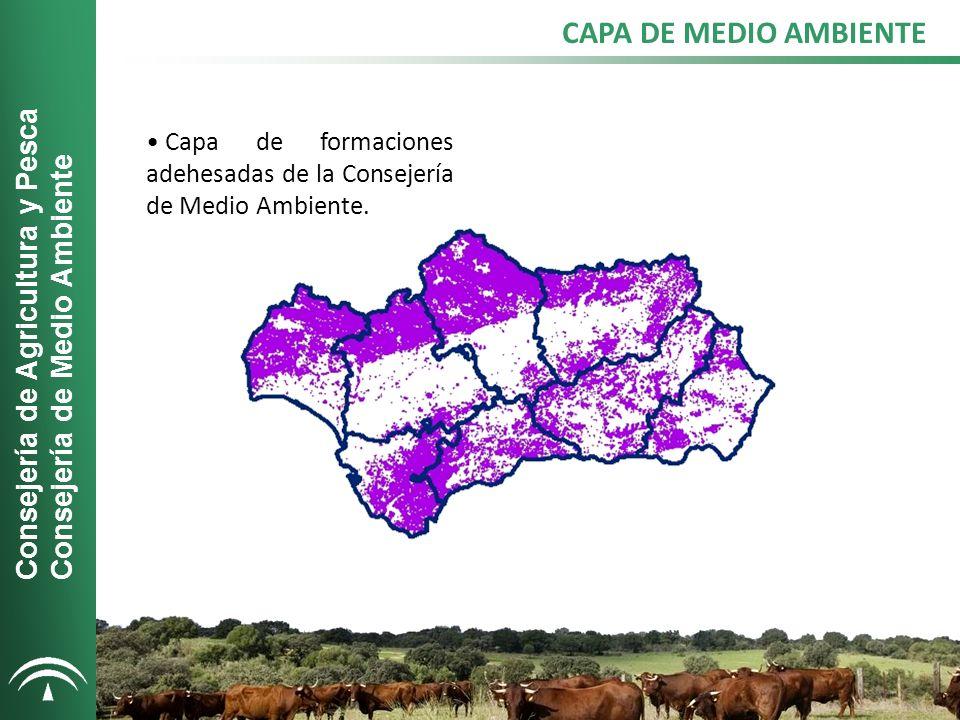 CAPA DE MONTANERA Incluye las zonas que pueden considerarse aptas para la alimentación del cerdo ibérico tal y como se define en el Real Decreto 1469/2007.
