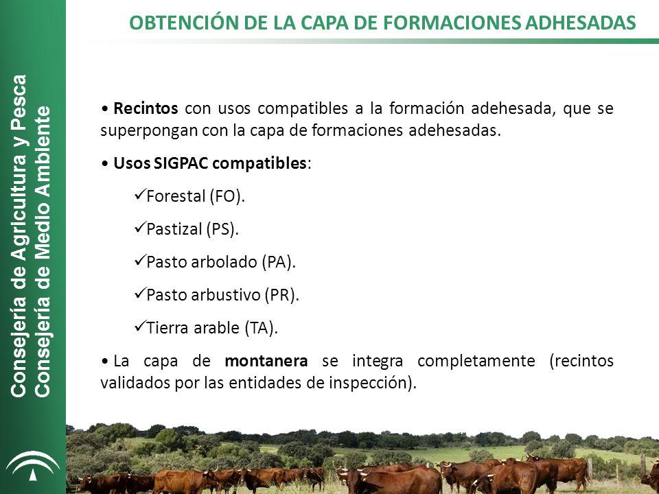 CAPA DE FORMACIONES ADEHESADAS PUBLICADA EN SIGPAC Superficie: 1.255.900 Ha Consejería de Agricultura y Pesca Consejería de Medio Ambiente