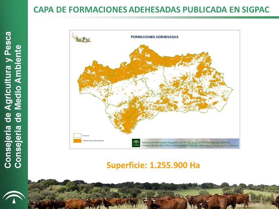 CAPAS SIGPAC 2011 Consejería de Agricultura y Pesca Consejería de Medio Ambiente