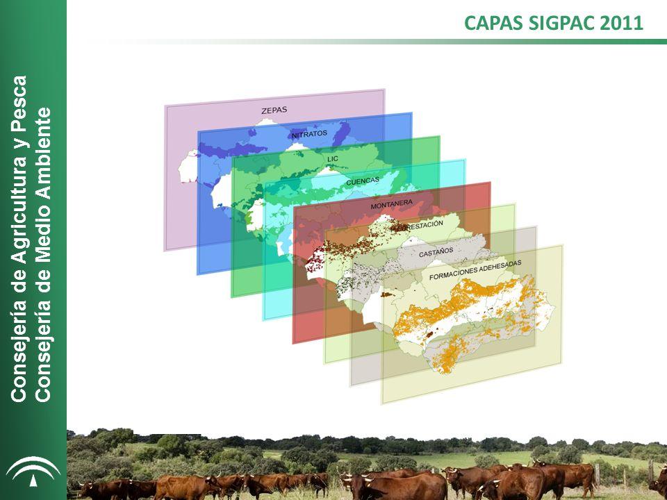 VISUALIZACIÓN EN EL VISOR SIGPAC Consejería de Agricultura y Pesca Consejería de Medio Ambiente