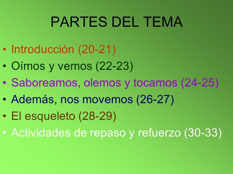 PARTES DEL TEMA Introducción (20-21) Oímos y vemos (22-23) Saboreamos, olemos y tocamos (24-25) Además, nos movemos (26-27) El esqueleto (28-29) Activ