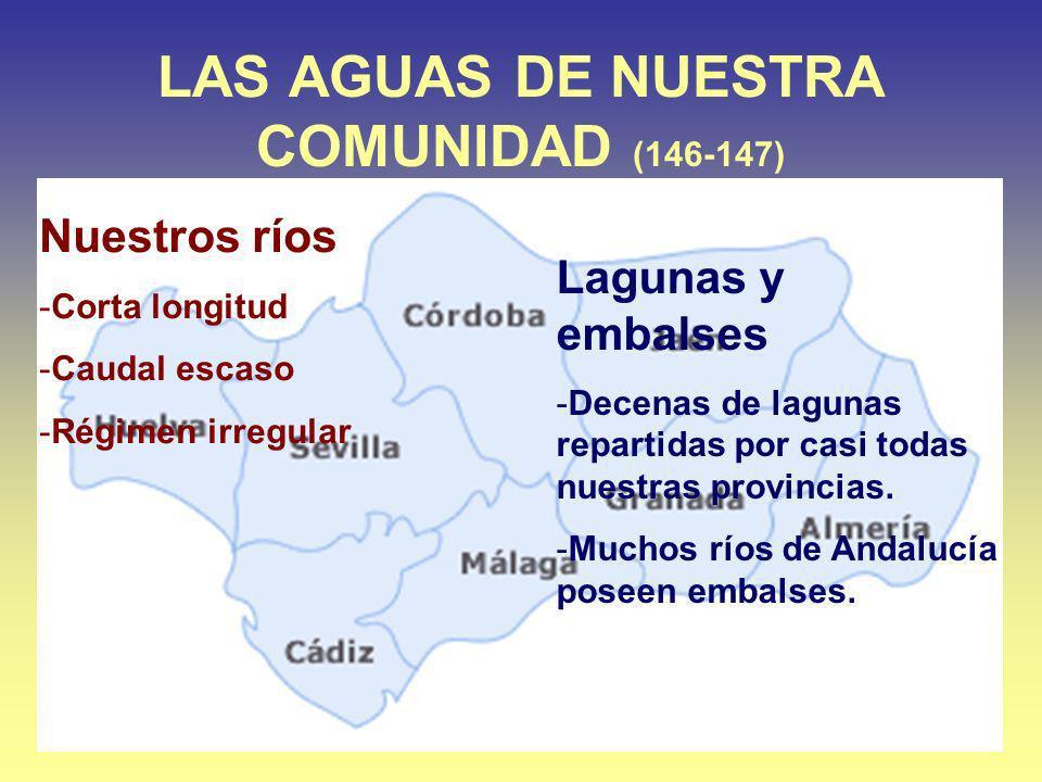 LAS AGUAS DE NUESTRA COMUNIDAD (146-147) Nuestros ríos -Corta longitud -Caudal escaso -Régimen irregular Lagunas y embalses -Decenas de lagunas repart